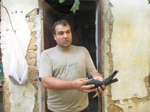 Гълъбар Димитър Димитров